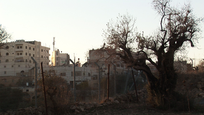 The Closed Military Zone / Tel Rumeida (south end)